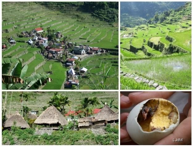 3 expériences gastronomiques surprenantes en voyage