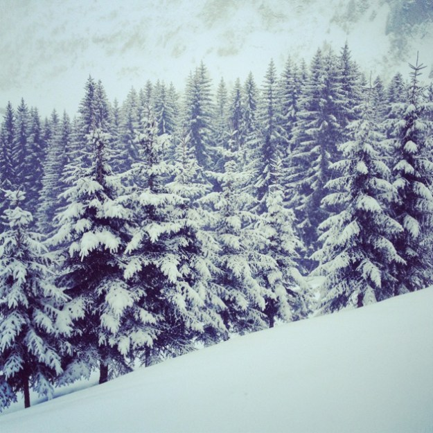 A quel âge débuter le ski ?