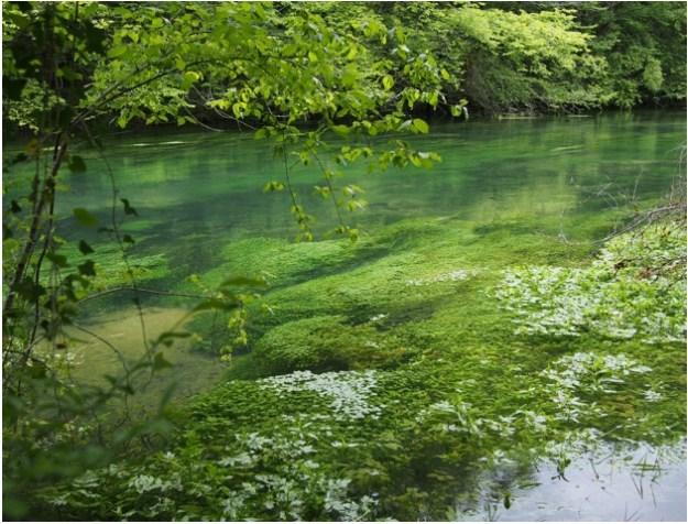 lagune2