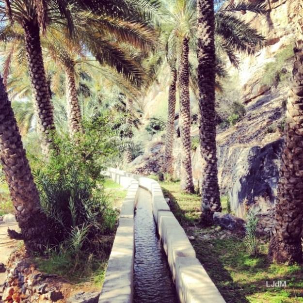 A Oman, dépaysement garanti !