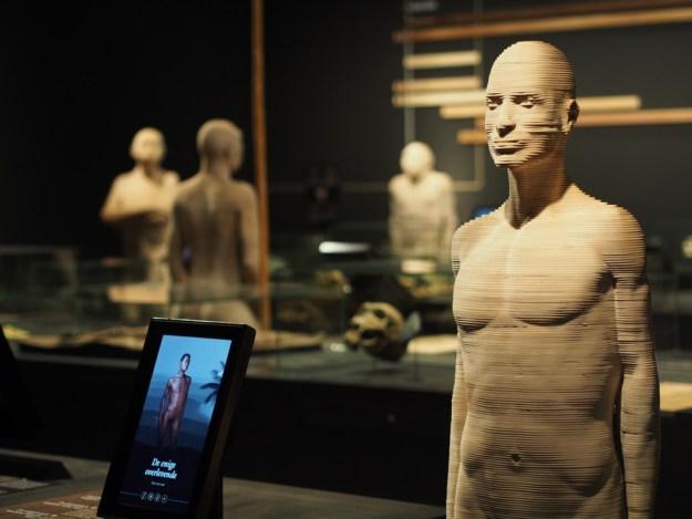 galerie de l'homme Bruxelles