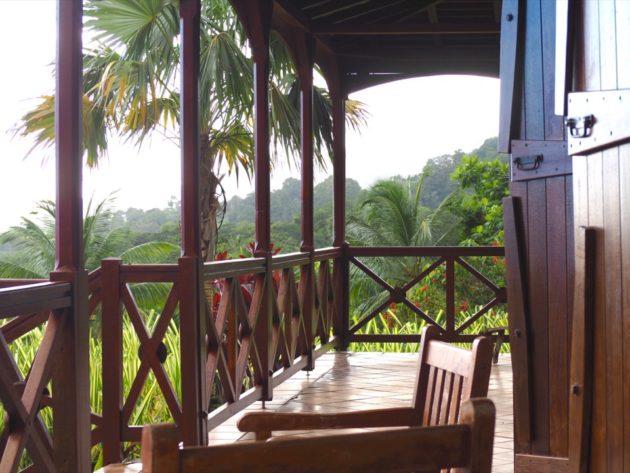 Jardin Malanga