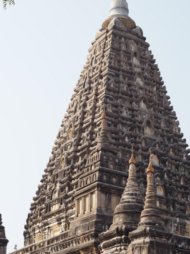 Maha-Bodhi