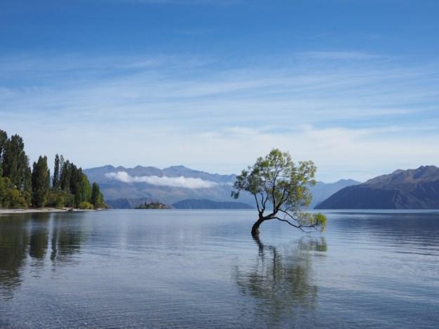 lac Wanaka en famille