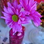 Some Keys to Floral Design
