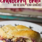 Chocolate Cranberry Braid (and the Science of Cranberry Sauce!)
