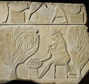 egiptoantiguo