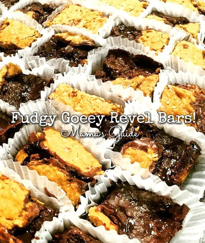 Fudgy Gooey Revel Bars