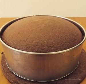 Soft Chocolate Sponge Cake