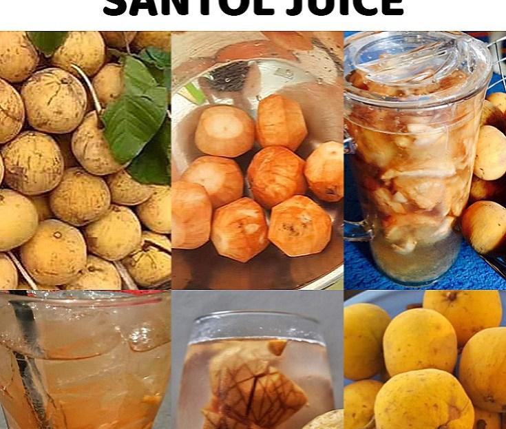 HOW TO MAKE SANTOL JUICE