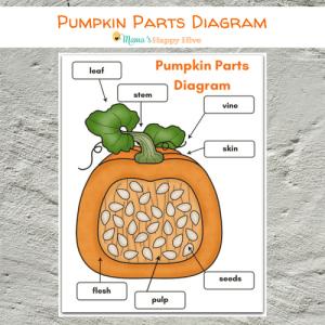 DIY Felt Pumpkin Parts and Life Cycle with Printables