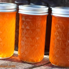 Kitchen Thermometer Outdoor Pictures Orange Soda Jelly - Mama's Homestead
