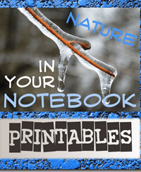 Nature Printables: My Nature Journal & What Did You See?