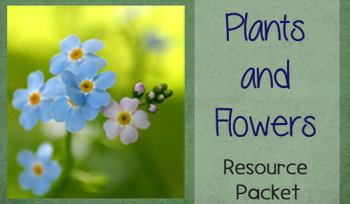 Plants and Flowers Themed Packet 300x175