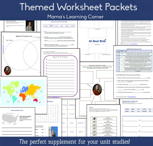 Worksheet Packets contain 12-15 printable worksheets for 1st-4th graders, centered around a particular topic