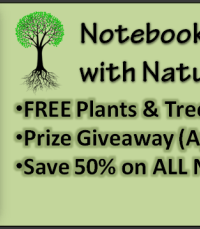 FREE Plants and Trees Nature Study Notebooking Pages