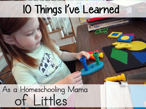 10 Things I've Learned as a Homeschooling Mama of Littles