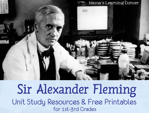 Free Unit Study Helps for Alexander Fleming including 3 free worksheets for Grades 1st-3rd