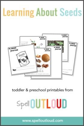 Preschool Seed Journal from Spell Outloud