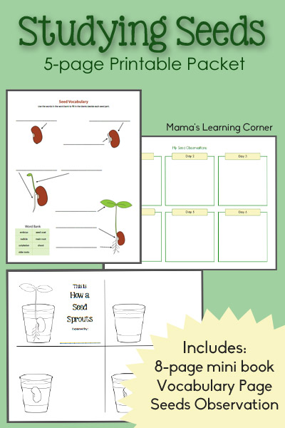 free studying seeds unit with printable mini
