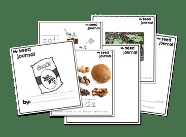 Seeds Preschool Journal