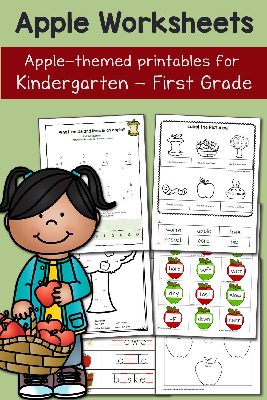 medium resolution of Apple Worksheets for Kindergarten and First Grade - Mamas Learning Corner