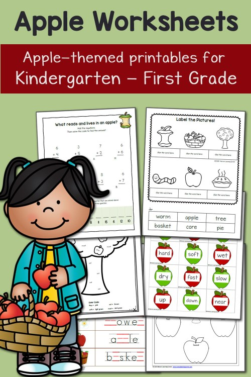 small resolution of Apple Worksheets for Kindergarten and First Grade - Mamas Learning Corner