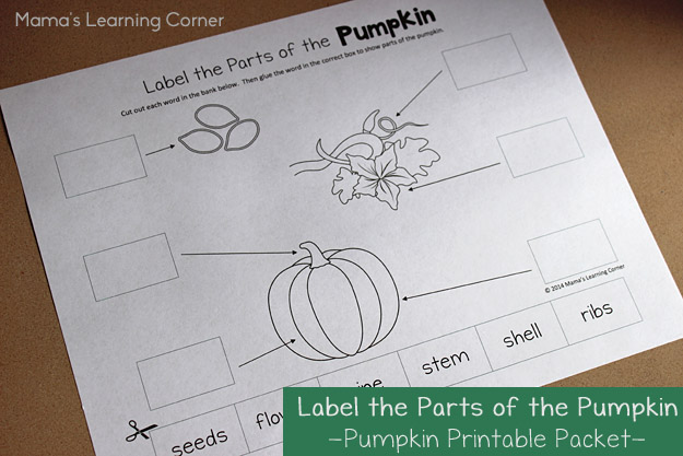Pumpkin Worksheet: Label the parts of the pumpkin