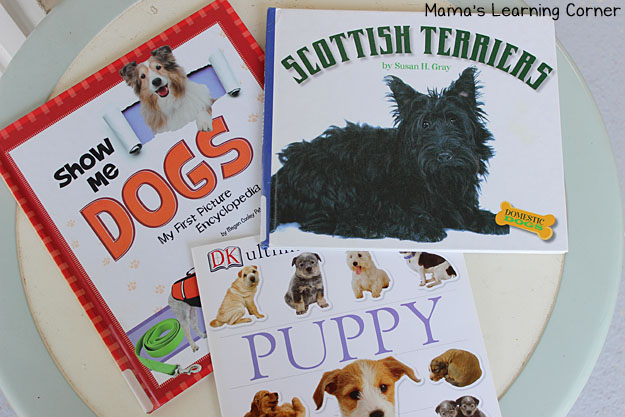Scottish Terrier Books