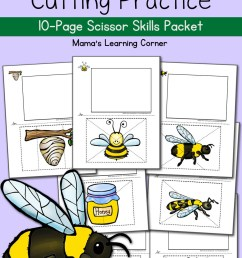 Bee Life Cycle Worksheets - Mamas Learning Corner [ 1500 x 1000 Pixel ]