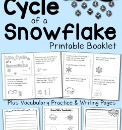 Life Cycle of a Snowflake Booklet - Mamas Learning Corner [ 1500 x 1000 Pixel ]
