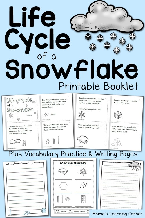 small resolution of Life Cycle of a Snowflake Booklet - Mamas Learning Corner