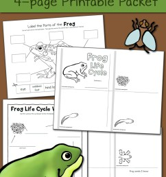 Pond Worksheets for Kindergarten and First Grade - Updated for 2016! -  Mamas Learning Corner [ 1500 x 1000 Pixel ]