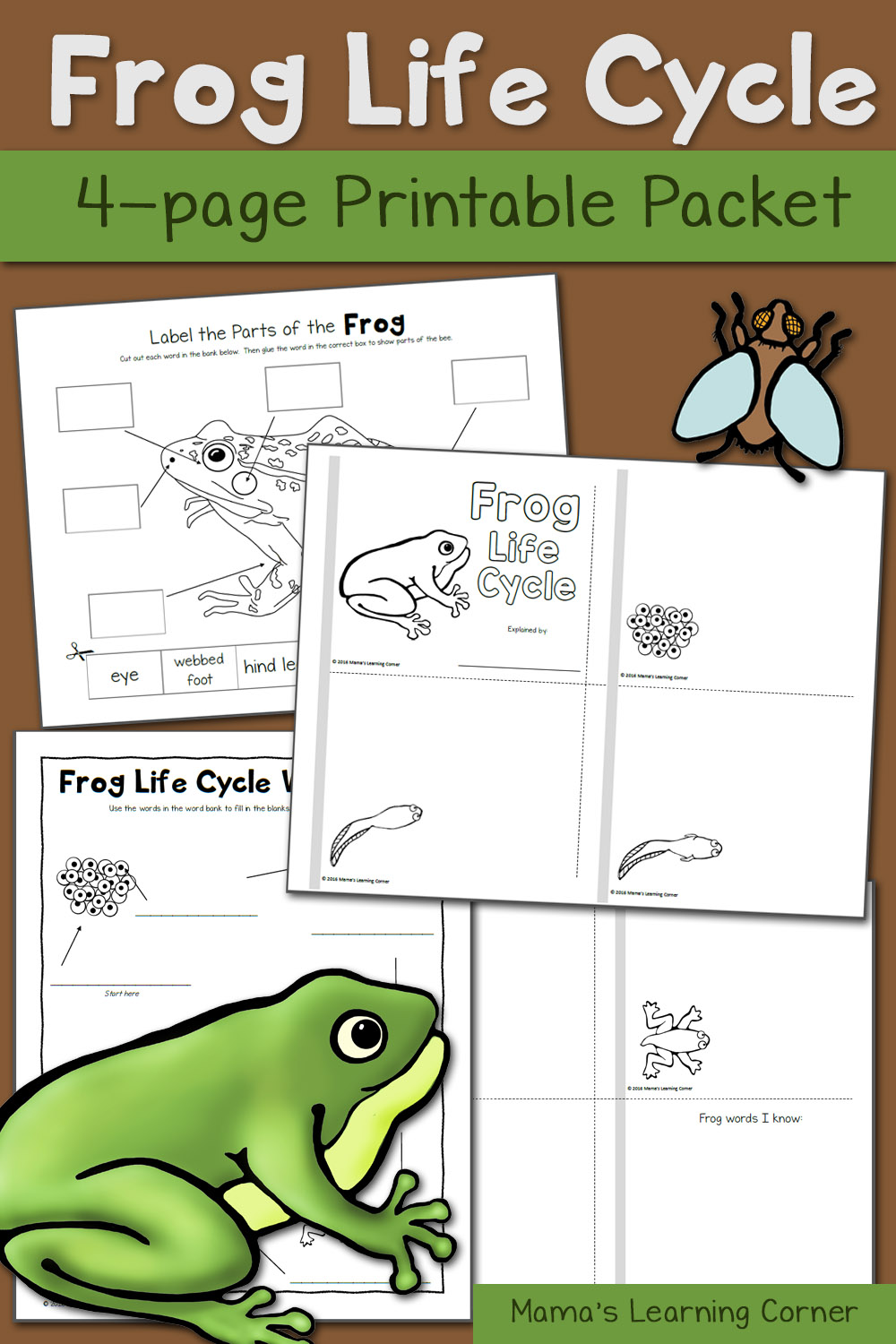 medium resolution of Pond Worksheets for Kindergarten and First Grade - Updated for 2016! -  Mamas Learning Corner