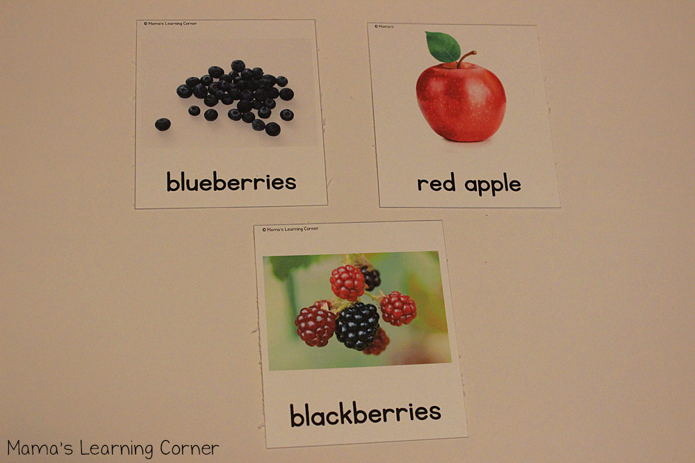 Fruit 3 Part Cards