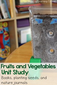 Fruits and Vegetables Unit Study: Planting Seeds and Nature Journals