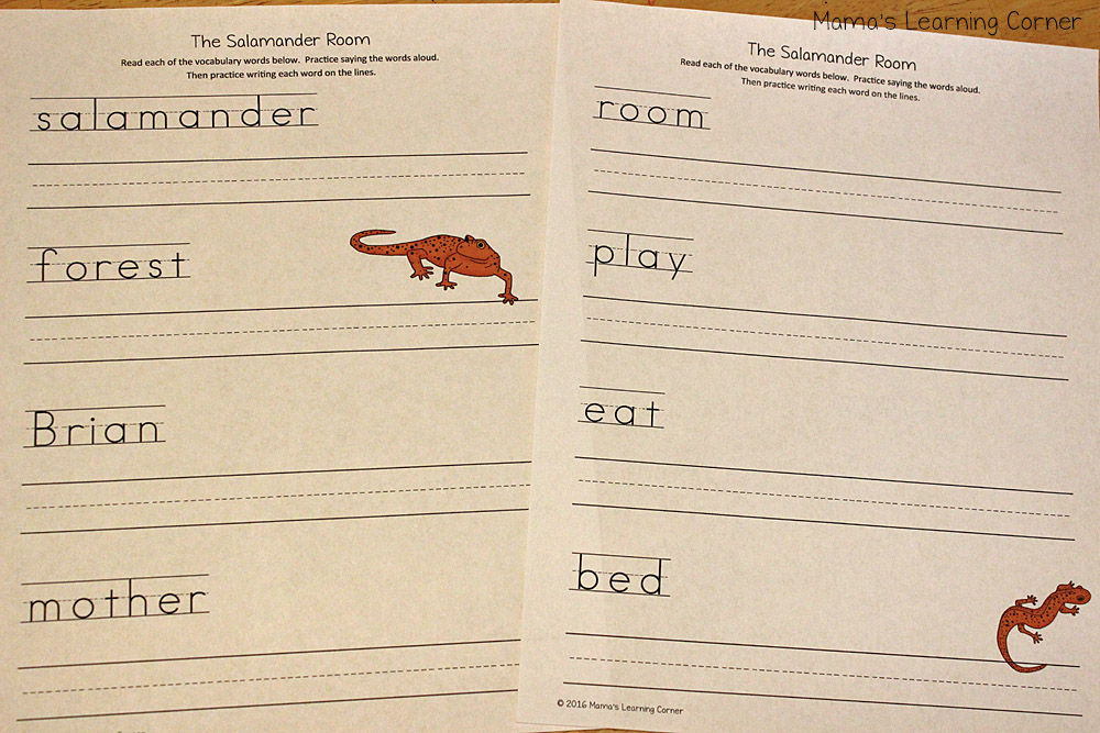 The Salamander Room Writing Practice