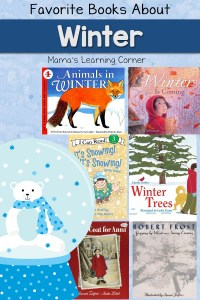 Favorite Books About Winter