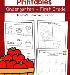 Apple Worksheets for Kindergarten-First Grade - Mamas Learning Corner [ 1500 x 1000 Pixel ]