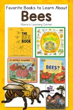 Favorite Books About Bees