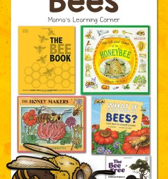 Our Favorite Books About Bees - Mamas Learning Corner [ 1500 x 1000 Pixel ]
