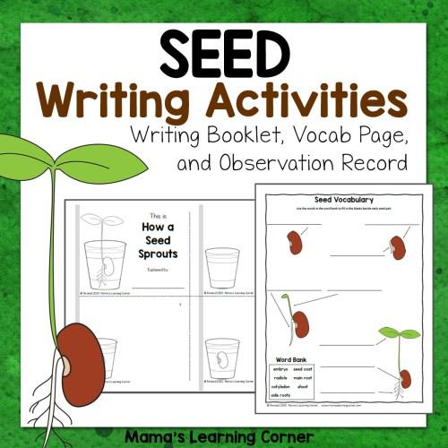 Seed Writing Activities