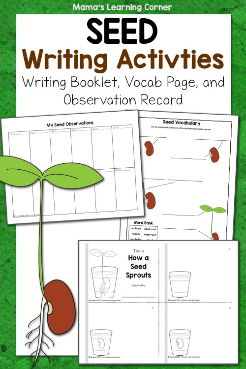 small resolution of Seed Writing Activities - Mamas Learning Corner