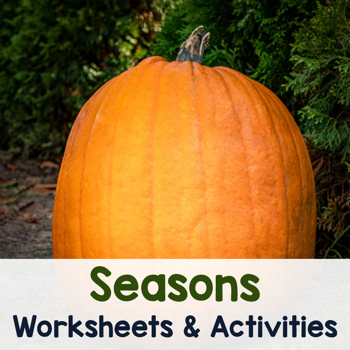 Seasons Worksheets And Activities Archives