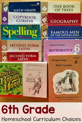 6th Grade Homeschool Curriculum Choices 2020-2021
