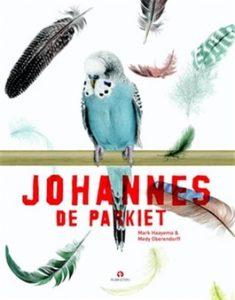 Johannes de Parkiet