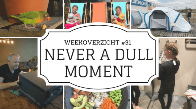 Never a Dull Moment week 32
