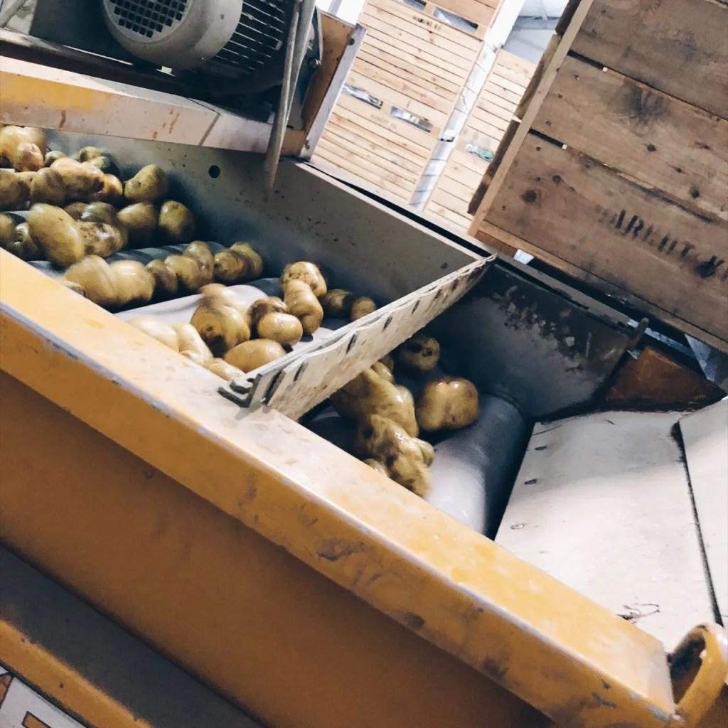 Spar regionales aus den Bundesländern Kartoffeln Mamawahnsinn