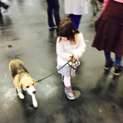 #WIB: Zeit für mich, viele Hunde, und eine Überraschung