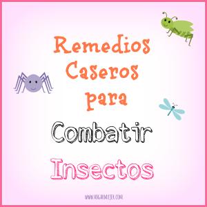 Remedios caseros para combatir inséctos